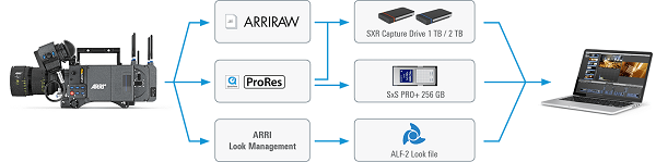 Simple-ARRI-workflows.png