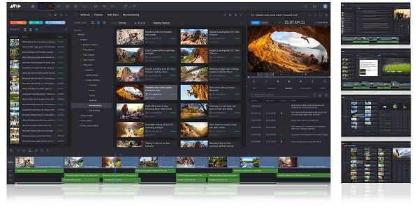 avidmediacentral.jpg