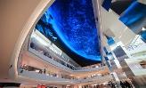 'China's biggest' 5mm LED screen shows 24K '3D' visual